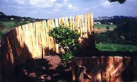 Carlyon Bay: Picket Fencing